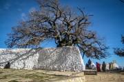 Banyan Tree Tamouda Bay