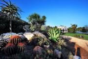 Donna Coraly Resort