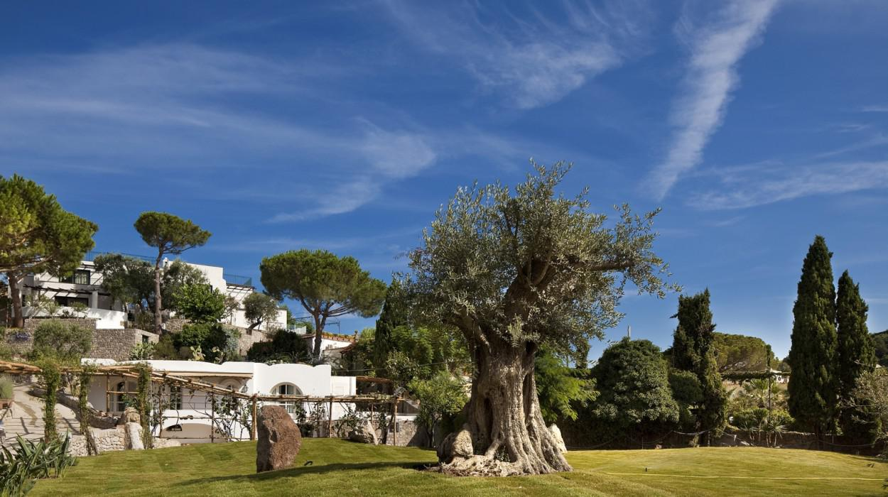 Garden & Villas Resort