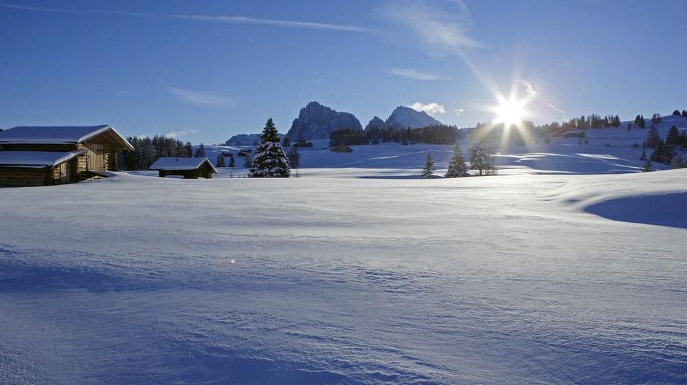 Hotel Adler Dolomiti Spa And Sport Resort