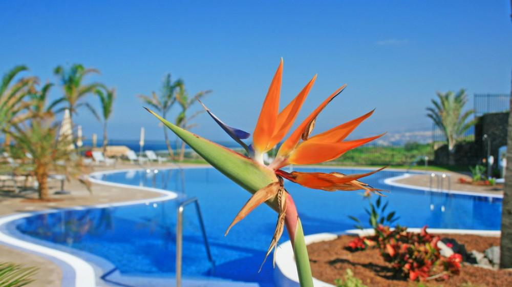 Hotel Luz Del Mar