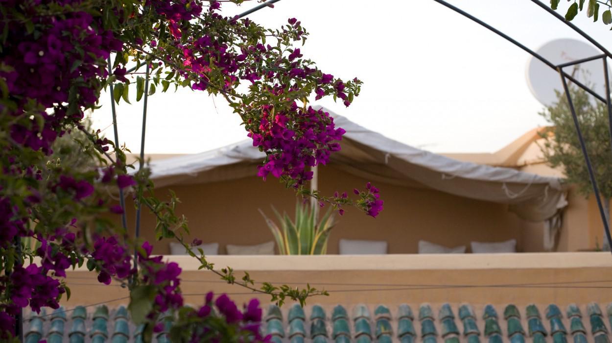 Riyad El Cadi