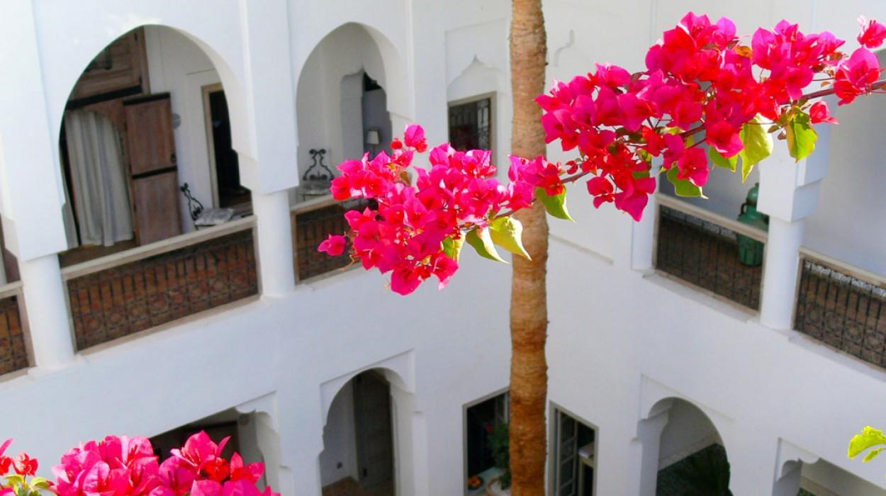 Riyad El Mezouar